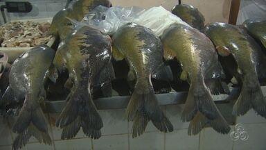 Manauenses reclamam do alto preço do pescado - Desperdício de peixe foi denunciado às autoridades nesta semana