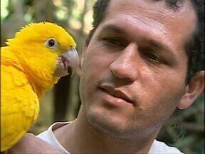 Meu Paraná mostra histórias de amor e gratidão no mundo animal - Resgatados do tráfico, muitos bichos hoje recebem cuidado e carinho