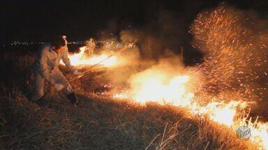São Carlos registrou 13 incêndios no final de semana, dois de grande proporção - São Carlos registrou 13 incêndios no final de semana, dois de grande proporção
