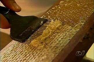 Setembro é época de colheita de mel em Goiandira, Goiás - Este ano a produção foi boa e os apicultores do município esperam colher, até o fim de outubro, mais de 30 toneladas de mel.
