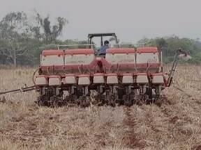 Plantio da soja está lento no sul de Mato Grosso do Sul - Apesar da chuva dos últimos dias, o solo ainda não tem umidade suficiente para garantir uma boa germinação. Só quem tem sistema de irrigação pode semear a terra mais cedo.