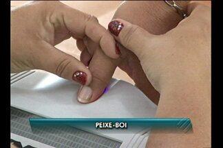 Acompanhe a cobertura das eleições em quatro municípios do nordeste do estado - Nos municípios de Peixe-boi e Capanema, a votação foi feita em urnas biométricas.