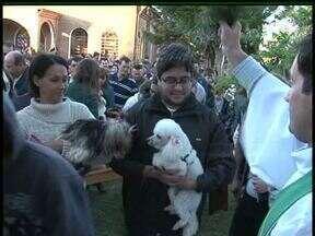 Fiéis levaram os animais de estimação para receber a benção na missa de São Francisco - A missa do santo protetor dos animais é celebrada há sete anos em Guarapuava.