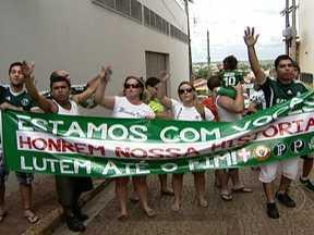 Jogadores e torcida ainda acreditam na reabilitação do Palmeiras - O Palmeiras, adversário do Fluminense neste domingo (11), briga para escapar da zona de rebaixamento. A torcida e os jogadores prometem lutar juntos pela permanência na Série A.