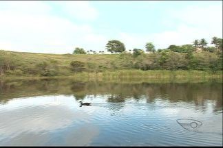 Após pedido de moradores, prefeitura faz limpeza de lagoa em Guarapari, no ES - Lagoa de Nova Guarapari, na Enseada Azul estava cheia de plantas e mosquitos.