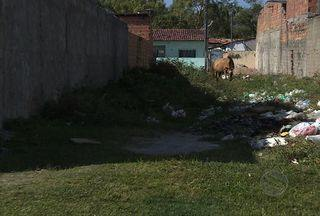 Moradores do Loteamento Piabeta reclamam da falta de saneamento - Comunidade diz que situação é antiga e que causa muitos transtornos.