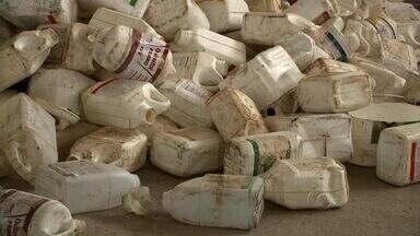 Aumentou o número de embalagens de agrotóxicos descartadas de forma correta em Alagoas - Ações de conscientização contribuíram para entender os riscos e a contaminação do descarte inadequado.