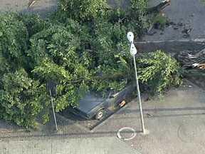 Árvore cai sobre um carro na Praça do Patriarca em Madureira - A Comlurb e o Centro de Operações da Prefeitura não souberam informar a causa da queda da árvore. A Comlurb já fez a limpeza do local e um trecho no entorno da praça que chegou a ser interditado já foi liberado.
