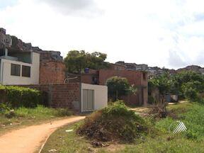 Moradores de duas comunidades de Salvador sofrem com as muriçocas - Que mora em Marechal Rondom e no Alto do Cabrito não tem conseguido nem dormir, por causa do barulho e das picadas do inseto.