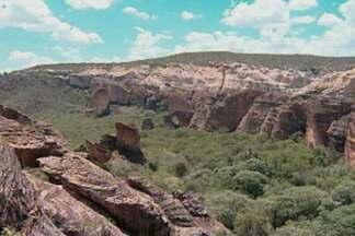 Conheça São Raimundo Nonato, no sul do Piauí, considerado o berço do homem americano - Fauna e flora exuberantes se misturam ao valor histórico das pinturas nas paredes de pedra do local.