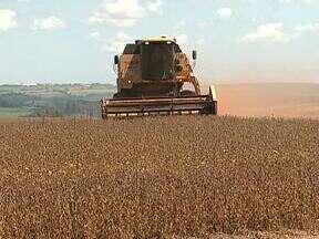 Começou a colheita de soja no Paraná - Agricultores estão animados com a produtividade das lavouras
