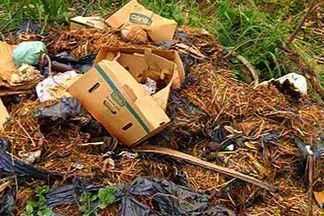 Combate a dengue mobiliza Marinha e Exército em Corumbá - Em Corumbá o trabalho de combate aos focos de dengue também conta com a ajuda da Marinha e do Exército, mas, além de ser um trabalho das autoridades em saúde, a população também precisa evitar o acúmulo de lixo em terrenos baldios.