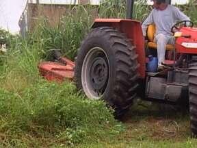 Produtores rurais se unem para combater focos de dengue em Rondonópolis - Em Rondonópolis, o poder público e o sindicato rural se uniram por meio de uma parceria para combater a dengue. Os produtores rurais cederam máquinas para um mutirão de limpeza nos terrenos baldios. A expectativa é que 3 mil lotes sejam limpos.