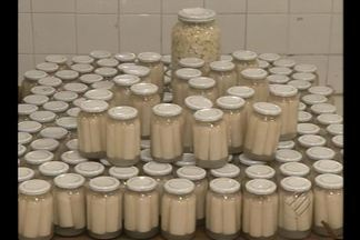 Veja como é a produção industrial de palmito de pupunha - Mercado do produto está em expansão. Palmito passa por rigoroso controle de qualidade antes de chegar nas lojas.