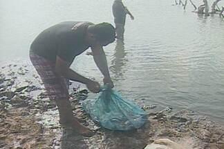Pescadores denunciam pesca ilegal na PB - Pescadores denunciaram a pesca ilegal durante a época de reprodução dos peixes para a Polícia Ambiental.
