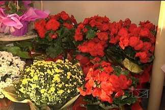 No Dia da Mulher, a venda de flores bate recorde em São Luís - No Dia da Mulher, a venda de flores bate recorde em São Luís. As floriculturas estão de plantão para atender a tantas encomendas. Violetas, orquídeas e rosas dão lucro a quem trabalha no ramo, e alegram o dia dedicado a elas.
