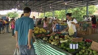 Nova feira livre começa a funcionar em Taubaté - Para muita gente, sábado (16) é dia de sair de casa pra fazer compras e em Taubaté, os moradores passam a ter uma nova opção: é que começou a funcionar uma feira livre.