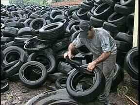 Perigo da dengue:Mais de 20 mil pneus estão expostos ao ar livre em Maringá - Os pneus estão acumulando água