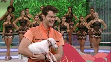 Carmo Dalla Vecchia e Rosa Maria brilham no Cachorrada VIP - O ator e sua cadelinha são os primeiros a dar show no palco do Domingão