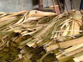 Prazo para madeireiros declararem os resíduos sólidos está acabando - Empresários do setor madeireiro têm até o dia 31 de março, portanto próximo domingo, para fazer a declaração de resíduos sólidos. A empresa que não declarar dentro do prazo ficará impedida de comercializar o produto e será multada.