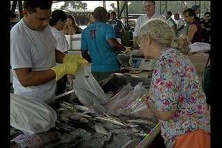 Feira oferece 360 toneladas de pescado a menor preço no Pará - Descontos podem chegar a até 50% no preço de mercado.