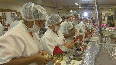 Fábricas de chocolate estão trabalhando acima da capacidade para dar conta dos pedidos - Fábrica da Companhia do Cacau é a maior de Pernambuco e exporta chocolate para 16 estados. Para esta Páscoa, produziu 12 milhões de produtos, entre ovos, coelhos, bombons e outras guloseimas.