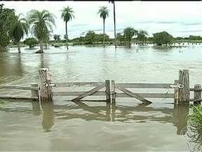 Chuva alaga propriedades no MS - Em Porto Murtinho, no oeste do estado, o excesso de chuva fez subir o nível do rio Paraguai. Muitas propriedades rurais ficaram alagadas. Dos quase 17 mil moradores, 600 estão em abrigos ou em casa de parentes.