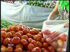 Entenda o motivo da alta do preço do tomate - Há locais cobrando até R$ 10 o quilo da fruta