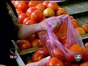 Público experimenta molho de abóbora em feira de São Paulo - Receita é opção para substituir tomate