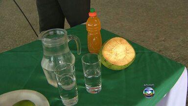 Hidratação tem papel importante no tratamento da dengue, dizem especialistas - Logo quando aparecer os primeiros sintomas, a pessoa devem beber muito líquido.