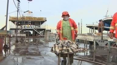 Desperdício de peixes volta a ser flagrado em Manaus - A grande quantidade de peixe desperdiçada na Feira da Panair é um problema recorrente no Centro de Manaus.