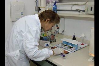 Evandro Chagas explica como se contrai a malária - Pesquisadora Ana Ventura, do Instituto Evandro Chagas, esclarece dúvidas sobre a doença.