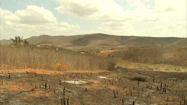 Prefeitos do Ceará cobram recursos do governo para amenizar a seca - Associação diz que recursos prometidos pelo governo não chegaram.