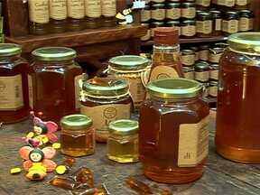 Pequena empresa se destaca ao processar de 30 a 40 toneladas de mel por ano - Uma pequena empresa do interior de São Paulo vem se destacando no mercado nacional, ao processar de 30 a 40 toneladas de mel por ano. Confira como isso é feito.