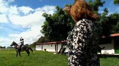 'Cavaleiros da fé' fazem cavalgada de 500 quilômetros, do Ceará a Pernambuco - Cavalgada sai de Juazeiro do Norte, no Sul do Ceará.