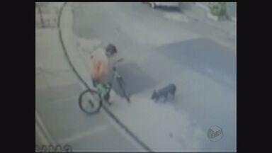 Suspeito pula muro de casa e rouba bicicleta em São Paulo, SP - Morador ficou surpreso com o roubo.