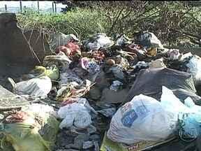 Moradores reclamam do lixo espalhado pelas ruas do Parque das Palmeiras - O Parque das Palmeiras, em Belford Roxo, está com o lixo espalhados pelas ruas. Os moradores reclamam que a coleta não é feita desde o final de maio.