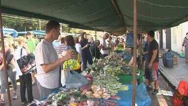 Frio e chuvas aumenta preço de verduras e legumes - Consumidores aproveitam feira para procurar descontos em alimentos.