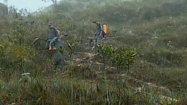 Bombeiros fazem planejamento de prevenção contra queimadas em MG - Serra de São José é uma das preocupações da corporação.