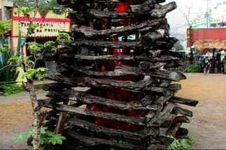Sudema faz orientações para montagem de fogueiras em João Pessoa - Sudema faz fiscalização rigorosa em pontos de vende de lenhas.