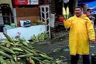 Apesar de seca, milho é abundante em feiras durante o São João em Campina Grande - O principal produto da festa junina não faltou na feira de Campina Grande.