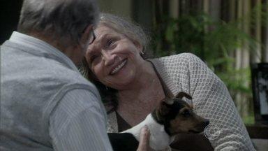 Bernarda e Lutero combinam de cuidar do cachorrinho - O médico fica surpreso com o presente da mãe de Pilar. Félix finge preocupação com a avó