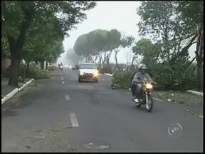 7 mil imóveis ficaram sem energia elétrica nesta segunda-feira (22) em Marília, SP - Cerca de sete mil imóveis passaram a tarde sem energia elétrica nesta segunda-feira (22), em Marília (SP), por causa da tempestade que atingiu a cidade. O apagão trouxe prejuízo e transtorno para milhares de pessoas.