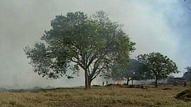 Fogo ameaça fazendas na Região de Ituiutaba - Nesta segunda-feira, um incêndio atingiu uma área de pastagens na região.