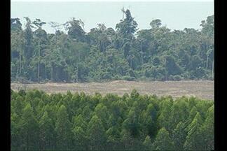 Representantes do MT conhecem o projeto Municípios Verdes, em Belém - Representantes do MT conhecem o projeto Municípios Verdes, em Belém.