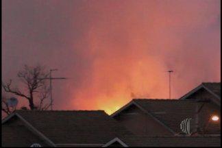 Incêndio assusta moradores em Mogi das Cruzes - O incêndio foi no bairro Caputera em Mogi das Cruzes. O fogo atingiu uma área de mata.