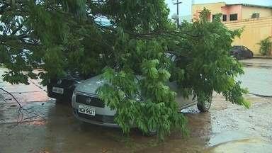Forte chuva em Porto Velho deixa vias alagadas e derruba árvores - Chuva começou por volta das 15h30. Alagamentos afetam, principalmente, Zona Leste da capital, diz Bombeiros.