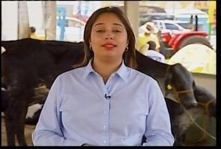 Exopovales é destaque no Inter TV Rural deste domingo - Confira os destaques do programa.