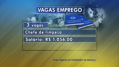 Chefe de limpeza e operador de produção são algumas das vagas disponíveis em Jaboatão - Confira as oportunidades de trabalho no município da Região Metropolitana.