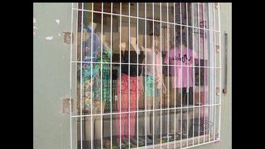 Moradores da Barra do Jucu, Vila Vleha, ES, reclamam da insegurança - Os comerciantes reclamam de arrombamentos e de prejuízos. Eles querem mais policiamento no balneário, que já foi um dos mais tranquilos da Grande Vitória.